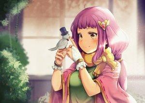 Rating: Safe Score: 17 Tags: animal bird blush brown_eyes dargo gloves long_hair necklace purple_hair seiken_manifestia tagme_(character) wristwear User: RyuZU