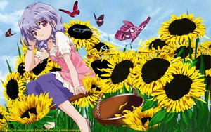 Rating: Questionable Score: 5 Tags: butterfly flowers herikawa_koishi onegai_teacher purple_hair sunflower User: gnarf1975