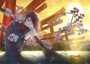 桜・花見の壁紙 3000×2127px 5874KB