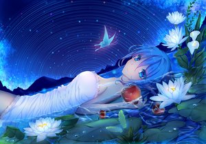 Rating: Safe Score: 88 Tags: apple aqua_eyes aqua_hair butterfly dress flowers food fruit hatsune_miku isy long_hair night stars summer_dress vocaloid water User: luckyluna