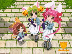 Rating: Questionable Score: 3 Tags: akiranyo dejiko di_gi_charat puchiko usada_hikaru User: 秀悟