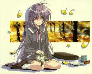 Rating: Safe Score: 12 Tags: animal autumn cat food iriya_kana iriya_no_sora_ufo_no_natsu leaves long_hair purple_hair red_eyes school_uniform tree User: Oyashiro-sama