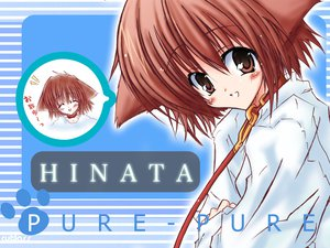 Rating: Safe Score: 12 Tags: collar doggirl hinata_(pure_pure) pure_pure User: Oyashiro-sama