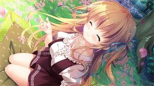 Rating: Safe Score: 60 Tags: game_cg hime-sama_love_life mikeou ruria_von_dina User: luckyluna