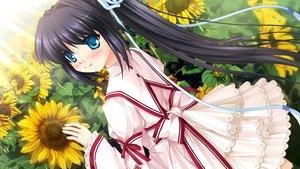 Rating: Safe Score: 66 Tags: dark flowers game_cg hinoue_itaru key konohana_lucia long_hair school_uniform sunflower tears visualart User: Stealthbird97
