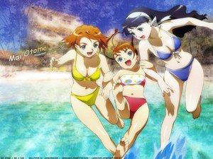 Rating: Safe Score: 5 Tags: beach bikini black_hair blue_eyes brown_hair headband mai-otome orange_hair rena_sayers swimsuit tokiha_mai yumemiya_arika User: Oyashiro-sama
