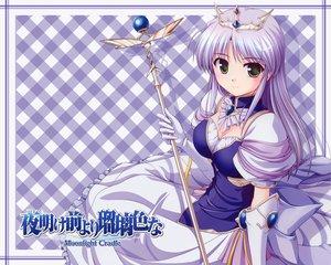 Rating: Safe Score: 17 Tags: bekkankou blush feena_fam_earthlight gloves green_eyes purple_hair staff tiara yoake_mae_yori_ruri_iro_na User: w7382001