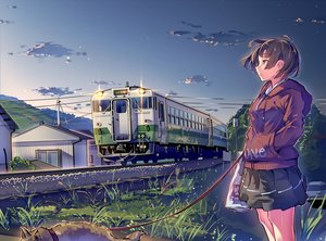Rating: Safe Score: 43 Tags: animal brown_eyes brown_hair building car clouds dog grass hoodie original scenic short_hair skirt sky tagme_(artist) train User: luckyluna