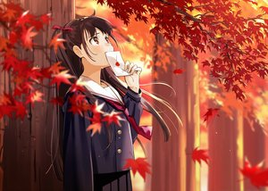 Rating: Safe Score: 60 Tags: autumn brown_eyes brown_hair crying leaves long_hair original paper school_uniform skirt tears tie tree urata_asao User: RyuZU