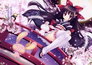 Rating: Safe Score: 135 Tags: black_hair bow cherry_blossoms dress japanese_clothes kimono loli lolita_fashion long_hair original petals scan thighhighs tsukishima_yuuko zettai_ryouiki User: Wiresetc
