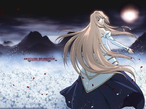 Rating: Safe Score: 25 Tags: archetype_earth arcueid_brunestud shingetsutan_tsukihime User: 秀悟