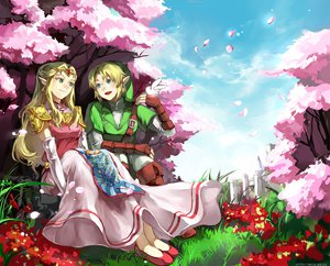 Rating: Safe Score: 60 Tags: link_(zelda) the_legend_of_zelda zelda User: garypan