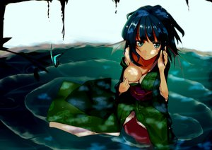Rating: Safe Score: 109 Tags: ana_dogukishi animal_ears blue_hair breasts butterfly green_eyes japanese_clothes mermaid short_hair touhou wakasagihime water User: FormX