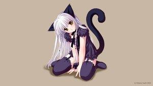 Rating: Safe Score: 34 Tags: animal_ears blush catgirl choker garter_belt gothic long_hair original saeki_hokuto tail thighhighs third-party_edit waifu2x watermark white_hair yellow_eyes User: gnarf1975