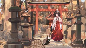 Rating: Safe Score: 41 Tags: animal autumn bird black_hair brown_eyes cat forest japanese_clothes leaves long_hair miko original tagme_(artist) torii tree User: luckyluna