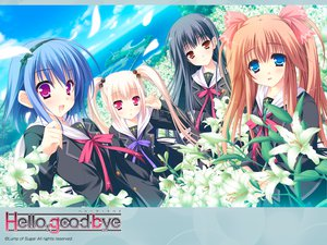 Rating: Safe Score: 22 Tags: flowers group hello_good-bye hiiragi_koharu moekibara_fumitake rindou_natsume saotome_suguri seifuku yukishiro_may User: oranganeh