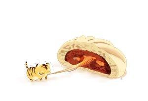Rating: Safe Score: 30 Tags: animal chai_(artist) chibi food nobody original signed tiger white User: otaku_emmy