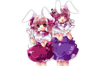 Rating: Safe Score: 9 Tags: bunnygirl di_gi_charat usada_akari usada_hikaru User: Oyashiro-sama