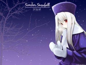 Rating: Safe Score: 3 Tags: fate_(series) fate/stay_night gloves hat illyasviel_von_einzbern purple red_eyes snow tree white_hair winter User: Oyashiro-sama