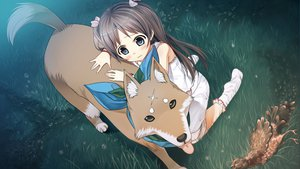 Rating: Safe Score: 73 Tags: animal bird blood blue_eyes blush bow brown_hair cura dog game_cg grass long_hair lose mekkai monobeno night sawai_natsuha scar scarf shirt socks twintails User: Wiresetc