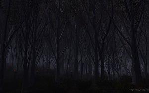Rating: Safe Score: 82 Tags: dark forest hellsing night red_eyes tree User: Eruku