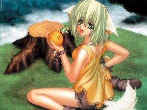 Rating: Safe Score: 0 Tags: animal_ears carnelian doggirl green_eyes green_hair tagme tail User: 秀悟