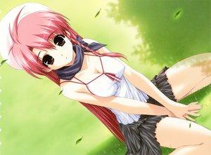 Rating: Safe Score: 127 Tags: boy_meets_girl breasts brown_eyes cleavage grass hat petals pink_hair shintaro skirt tsubasa_miu User: Oyashiro-sama
