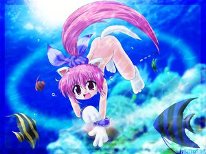 Rating: Safe Score: 15 Tags: animal animal_ears catgirl fish nude underwater water User: Oyashiro-sama