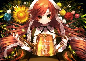 Rating: Safe Score: 42 Tags: bicolored_eyes brown_hair flowers headdress lolita_fashion long_hair nagata_shuu rose rozen_maiden suiseiseki sunflower User: otaku_emmy