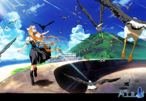 Rating: Safe Score: 21 Tags: air animal bird kamio_misuzu key visualart User: Oyashiro-sama