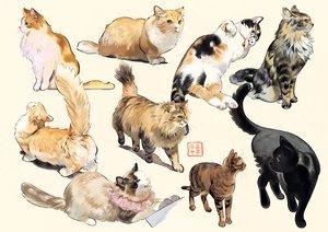 Rating: Safe Score: 51 Tags: animal cat original umishima_senbon User: FormX