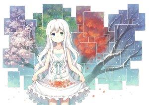 桜・花見の壁紙 1700×1200px 1504KB