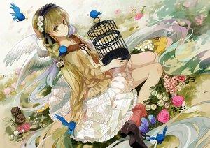 Rating: Safe Score: 87 Tags: animal bird braids cage dress flowers green_eyes green_hair hatsune_miku headdress long_hair michi_(iawei) socks vocaloid wings User: Flandre93