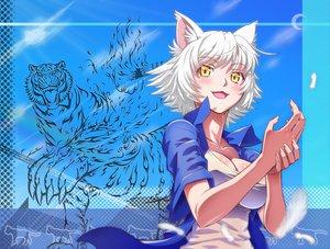 Rating: Safe Score: 82 Tags: animal animal_ears catgirl dondongarara fang hanekawa_tsubasa monogatari_(series) nekomonogatari short_hair tiger white_hair yellow_eyes User: SciFi
