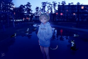 Rating: Safe Score: 54 Tags: animal animal_ears brown_hair building cat catgirl foo_midori green_eyes hoodie night original park reflection short_hair signed tail tree water User: otaku_emmy