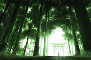 Rating: Safe Score: 84 Tags: forest gensuke japanese_clothes miko original scenic torii tree User: mattiasc02