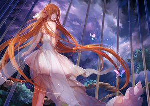 Rating: Safe Score: 180 Tags: asukaziye butterfly dress long_hair orange_eyes sky sword_art_online yuuki_asuna User: opai