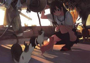 Rating: Safe Score: 101 Tags: animal black_eyes black_hair cat chain hat kneehighs long_hair morifumi original seifuku skirt tie User: RyuZU