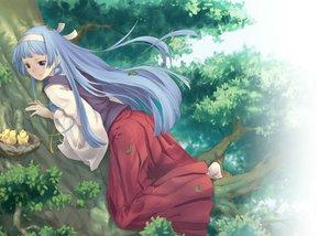 Rating: Safe Score: 96 Tags: animal bird blue_hair headband japanese_clothes kannagi_crazy_shrine_maidens leaves long_hair nagi pua purple_eyes socks tree User: Flandre93
