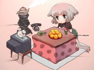 Rating: Safe Score: 6 Tags: doggirl drink food fruit gray_hair green_eyes kotatsu phone short_hair User: pantu