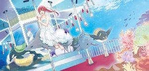 Rating: Safe Score: 73 Tags: animal barefoot dress fish free! hatsumi_(mdr323) long_hair matsuoka_gou pink_eyes pink_hair ponytail underwater water User: Flandre93