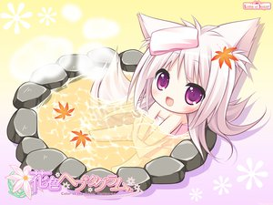 Rating: Safe Score: 90 Tags: animal_ears chibi foxgirl hanairo_heptagram long_hair lump_of_sugar miyuri moekibara_fumitake onsen tail User: Wiresetc
