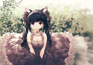 Rating: Safe Score: 98 Tags: animal_ears black_hair breasts catgirl cleavage dress flowers hirano_katsuyuki lolita_fashion long_hair original purple_eyes User: mattiasc02