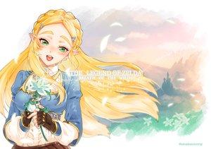 Rating: Safe Score: 23 Tags: 84k blonde_hair braids flowers gloves green_eyes long_hair pointed_ears princess_zelda the_legend_of_zelda waifu2x watermark User: otaku_emmy
