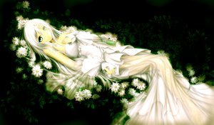 Rating: Safe Score: 116 Tags: dress flowers original ulquiorra0 white_hair User: Zolxys