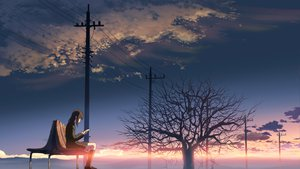 Rating: Safe Score: 93 Tags: brown_hair byousoku_5_centimetre clouds scenic shinkai_makoto shinohara_akari sky tree User: rodri1711