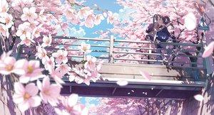 桜・花見の壁紙 4436×2389px 2387KB