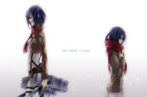 Rating: Safe Score: 57 Tags: 33_(m_r34) blue_hair mikasa_ackerman purple_eyes scarf shingeki_no_kyojin tears User: FormX