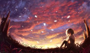 Rating: Safe Score: 158 Tags: animal bird clouds grass nio_(jacky19921205) original scenic short_hair sky sunset User: FormX