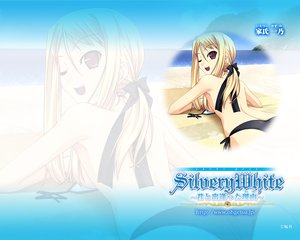 Rating: Safe Score: 9 Tags: murakami_suigun silvery_white tagme User: Oyashiro-sama